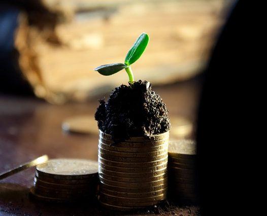 Wyniki dofinansowania projektów dla środowiska doktoranckiego