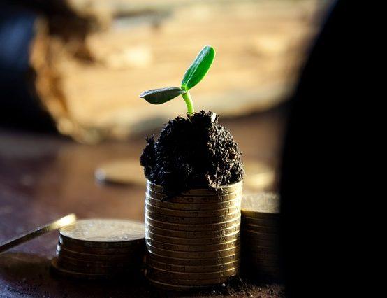 Dofinansowanie projektów dla środowiska doktoranckiego